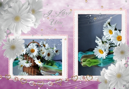 I love you - message, frame, flowers, white, asters