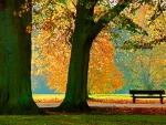 Autumn seating