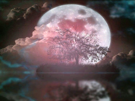 Marvelous nigh - pink, moon, clouds, night