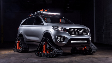 2016 Kia Sorento Ski Gondola - Silver, Light Bar, Tracks, Kia