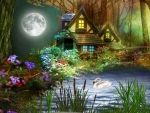 Magical House