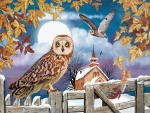 Owl in the Churchyard