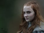 Sophie Turner As Sansa Stark
