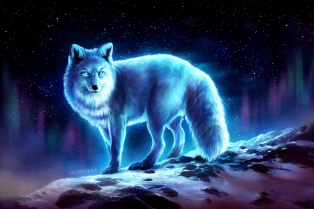 Blue Fox 3d And Cg Amp Abstract Background Wallpapers On