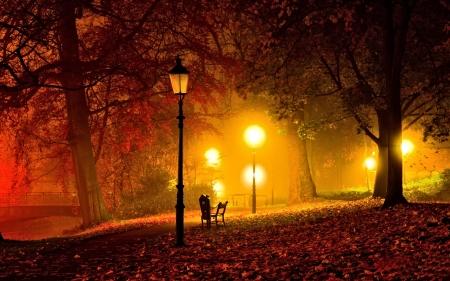 Autumn Night Other Nature Background Wallpapers On Desktop Nexus Image 2191560
