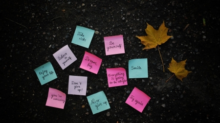 Just Be Yourself - rocks, leaves, words, ground, post its
