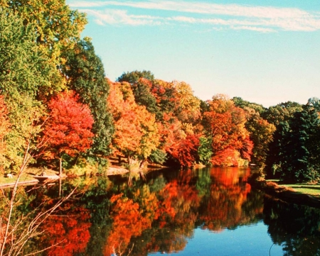 Amazing Autumn Colors Reflecting - colors, forest, trees, river, reflection, nature, autumn, lake