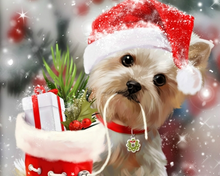 merry christmas dogs animals background wallpapers on desktop