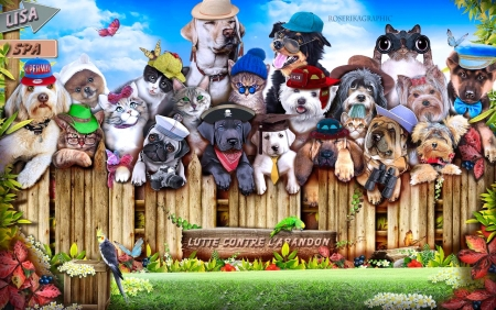 Neighborhood Pet Party - Party, adorable, Dogs, gang, mugshot, cute, digital, funny, cats, animals