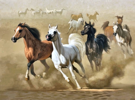 Arabian horses in the desert f horses animals background wallpapers on desktop nexus image - Arabian horse pictures ...