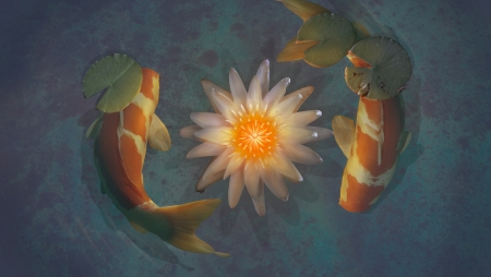 Koi Fish Fantasy Abstract Background Wallpapers On