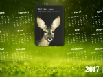 vegan deer wallpaper calendar 2017