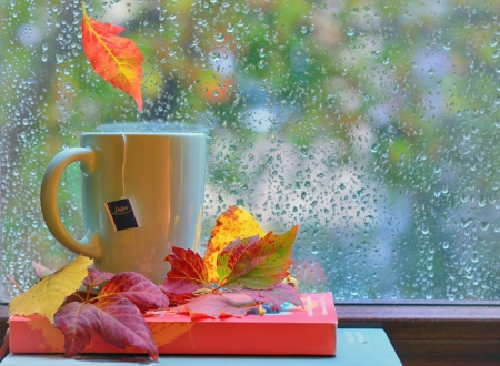 Rainy day - red, autumn, water drops, yellow, cup, rain, tea, leaf