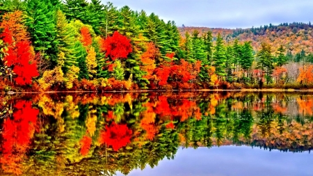 Autumn  Lake - landscape, sky, forest, splendor, reflection, nature, autumn, lake