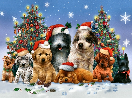 Canine Christmas F2Cmp - dalmation, cocker spaniel, beautiful, artwork, canine, animal, painting, wide screen, art, christmas, pets, dachshund, sheep hound, winter, scotch terrier, snow, dogs