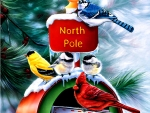 North Pole FC