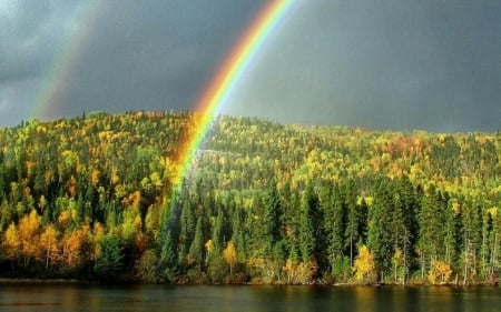 Rainbow above the Forest - hills, forest, autumn, rainbow, lake