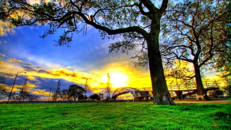 Sunshine Field - sun, bridge, grass, nature, sunshine, trees, sky, field