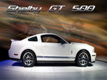 2007-Shelby 500