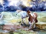 White and Paint Horses