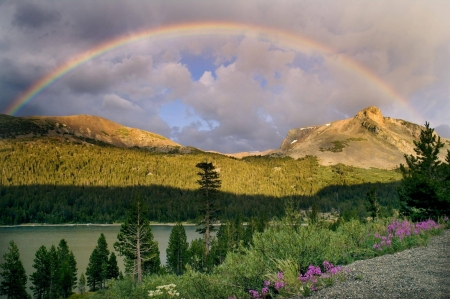 rainbow in nature - fun, cool, rainbow, field, nature