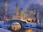 Winter night in central park