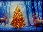 Christmas deers in forest
