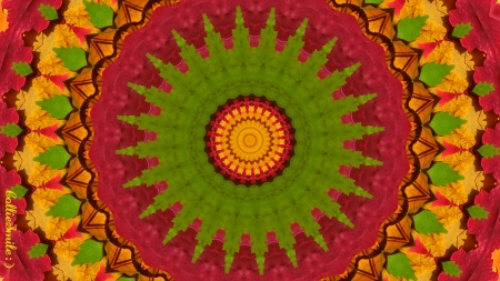 (Simpler) Leafy Christmas Tree Rings - shapes, colorful, magnolia, Autumn Leaves, scarlet, birch, Japanese maple, noe1, leafy, berry, green, hawthorn, colors, Autumn Blaze Maples, oaks, trees, co11age, sassafras, silver maple, leaf, kaleidoscope, kaleidoscopes too1, tree, multicolored, blue berries, elms, Norway maple, sweet gum, reds, golden yellow, sugar maples