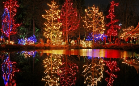 Winter lights on lake - lovely, christmas, belle, various, beautiful, lake, winter, light
