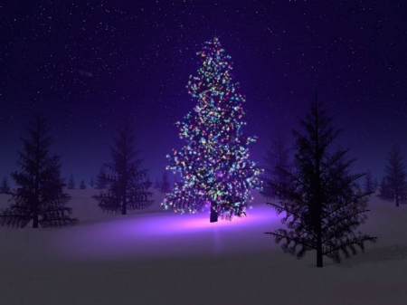 Merry Christmas - Pine tree, christmas, snow, pine trees, lights, night