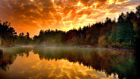 Misty Lake - forest, nature, sunset, reflection, trees, clouds, mists, lake