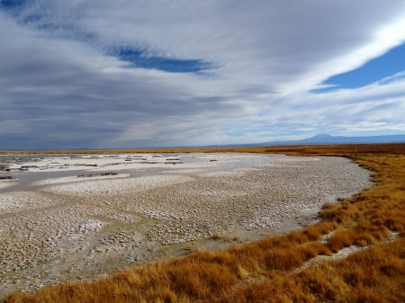 Solid Lake - grass, salt, barren, clouds, lake
