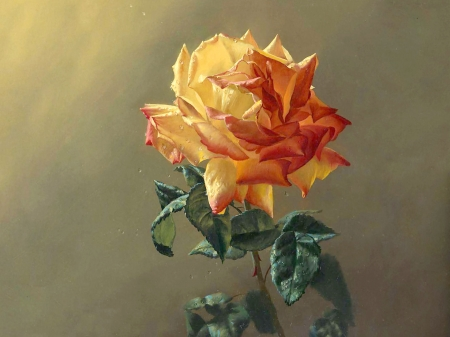 Yellow Rose With Dewdrops F - art, romance, rose, beautiful, artwork, floral, dewdrops, love, painting, wide screen, flower, beauty