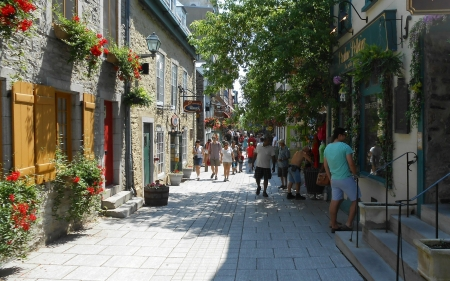 Old Quebec, Canada - Canada, houses, summer, Quebec, street