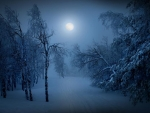 Winter_Misty Moon