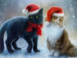 Christmas Cats!
