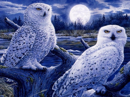 Snow Owls - moon, painting, raptor, clouds, artwork, night, landscape