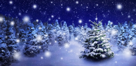 Snowy night - Other & Abstract Background Wallpapers on ...