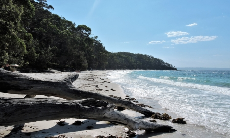 Jervis Bay - beaches, paradies, nature, sand