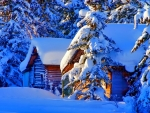 Snowy cottages