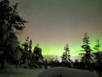 Aurora over Winter Forest in Finland