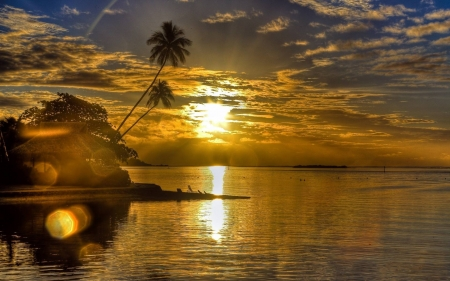 Till the End of Day - palm, sunset, trees, clouds, lake, sea, beach, nature, reflection