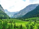 Green valley in Tyrol, Austria