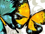 Butterflies Bright Vector