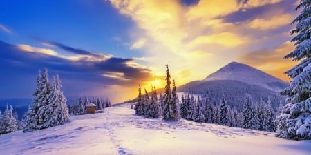 Wintertime - forest, beautiful, sunset, trees, sky, ski, winter, cold, mountain, snow, slope, landscape, frost