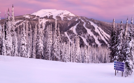 Winter Mountain at Sunset - Snow, Sunset, Trees, Mountain