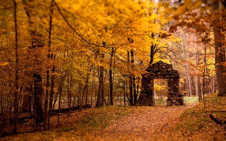 Old Stone  - way, fall, gate, forest, leafs, stone, wood, pathway, autumn, stone arch, nellisoft, arch, england, tree