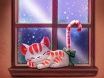 Cat Candy Cane