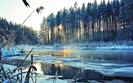 Lake in Winter - Snow, Winter, Lake, Nature