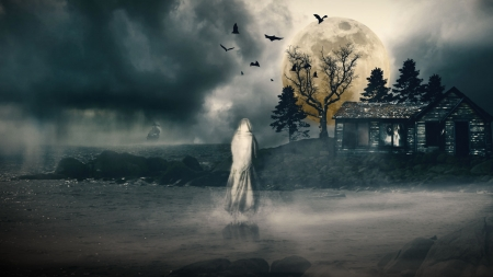Came Back - fantasy, house, water, ghost, bats, full moon, dark, trees